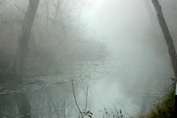 Geronimo Creek in Fog