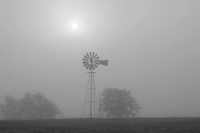 Foggy Morning Windmill, outside Seguin, Texas